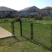 Chain Link Fence With 3 Gates
